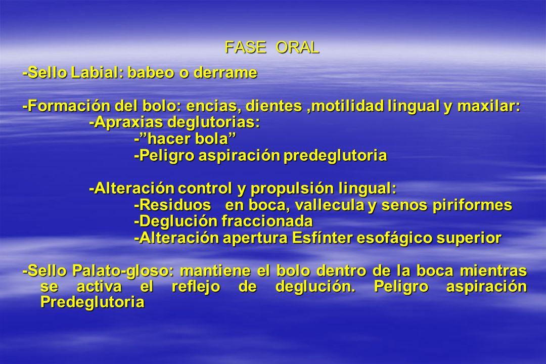 FASE ORAL -Sello Labial: babeo o derrame. -Formación del bolo: encias, dientes ,motilidad lingual y maxilar: