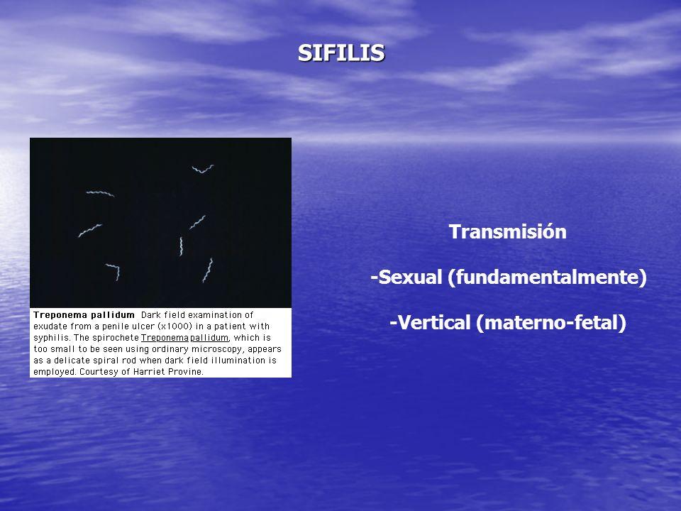 -Sexual (fundamentalmente) -Vertical (materno-fetal)