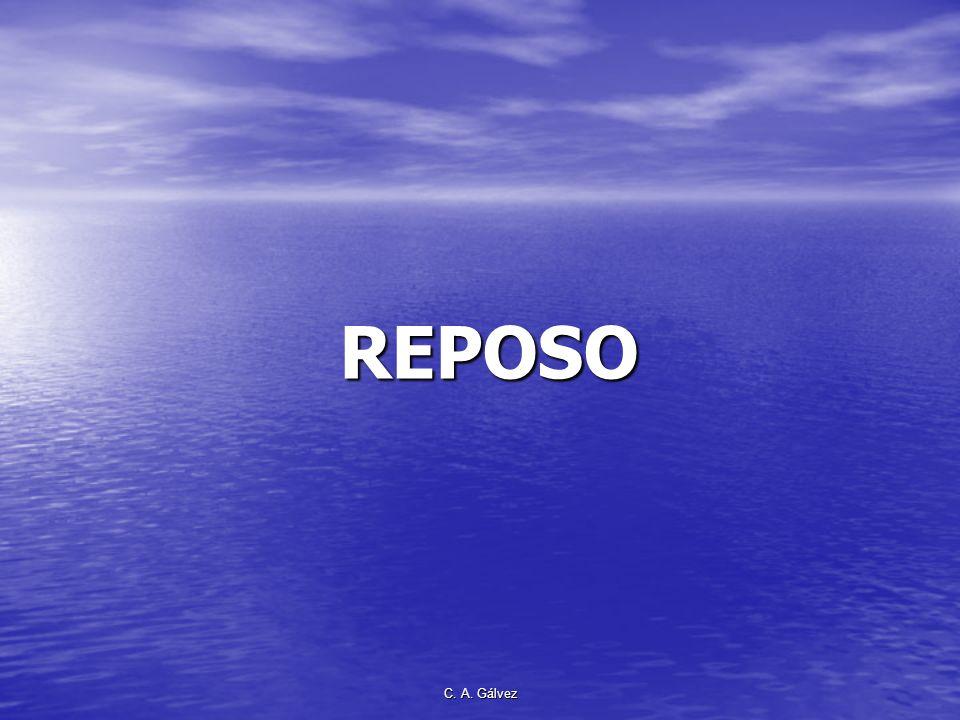 REPOSO C. A. Gálvez