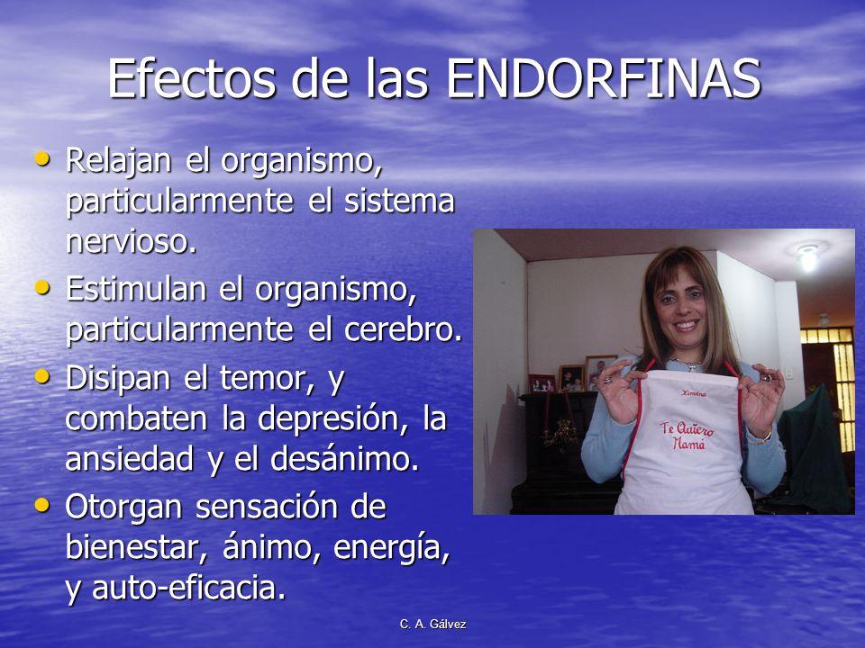 Efectos de las ENDORFINAS
