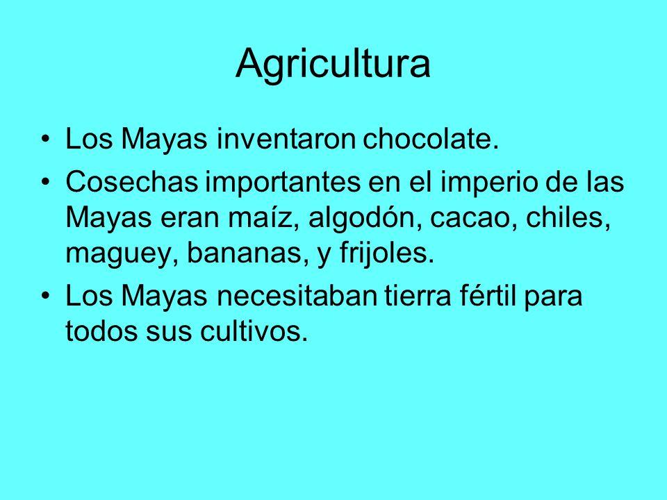 Agricultura Los Mayas inventaron chocolate.