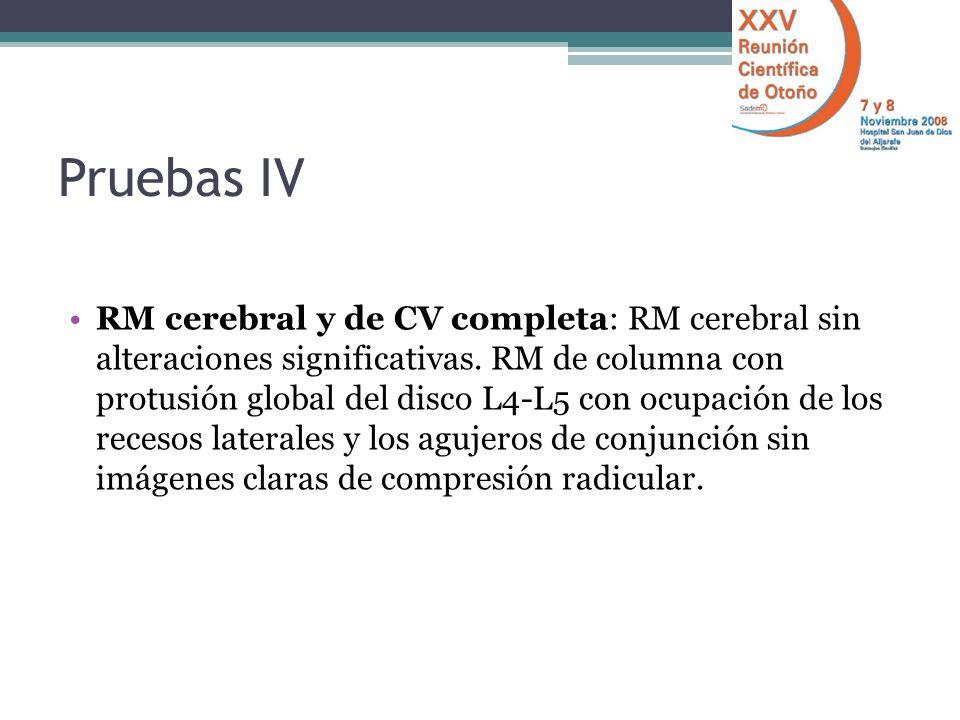 Pruebas IV