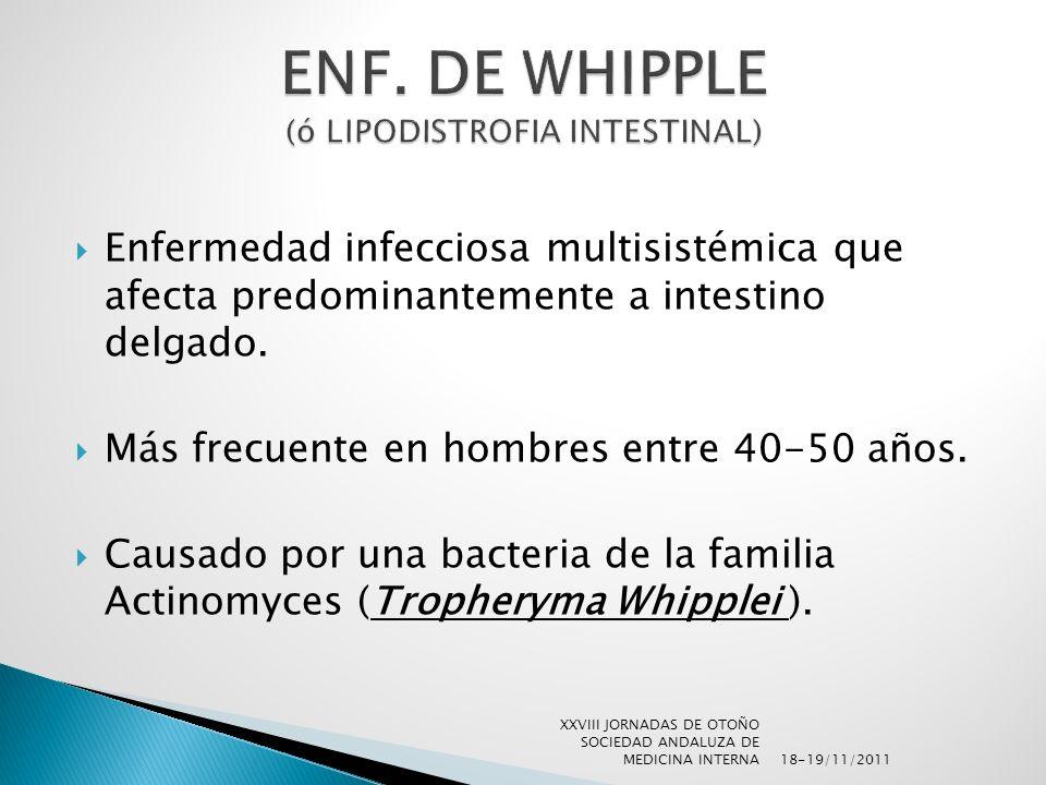 ENF. DE WHIPPLE (ó LIPODISTROFIA INTESTINAL)