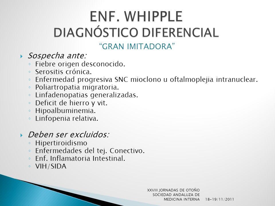 ENF. WHIPPLE DIAGNÓSTICO DIFERENCIAL