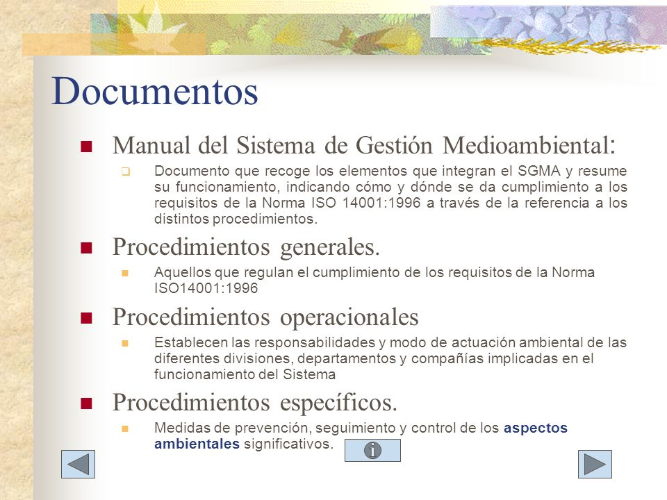 Documentos Manual del Sistema de Gestión Medioambiental: