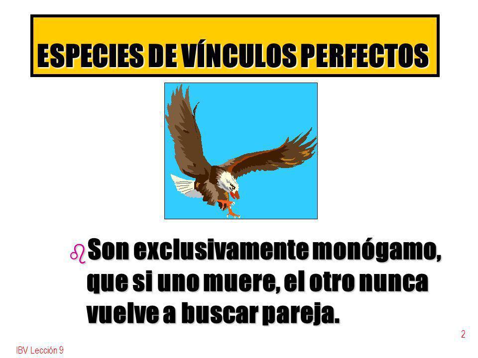 ESPECIES DE VÍNCULOS PERFECTOS