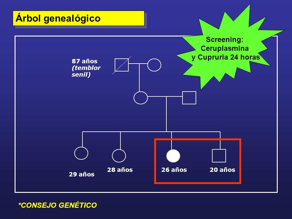 Árbol genealógico Screening: Ceruplasmina y Cupruria 24 horas