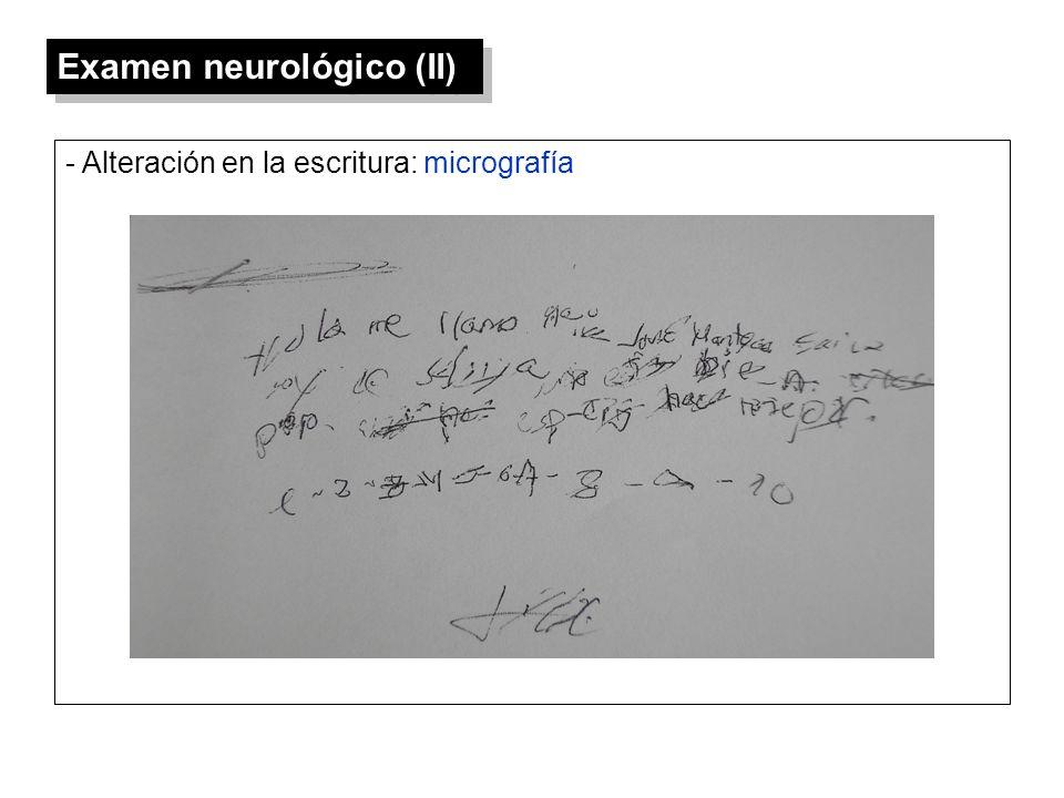Examen neurológico (II)