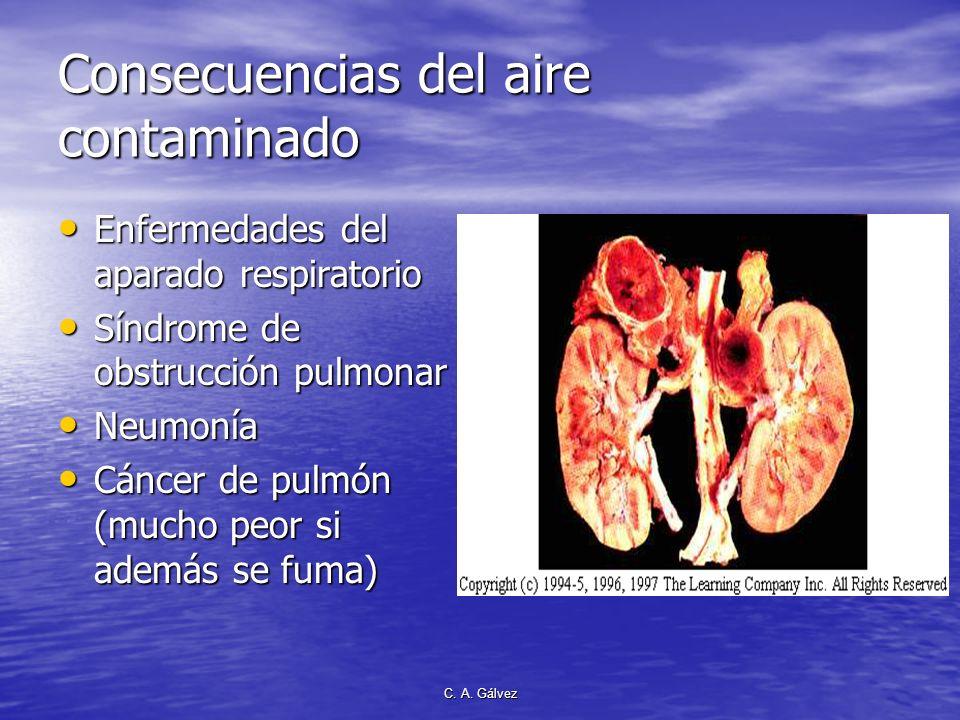 Consecuencias del aire contaminado