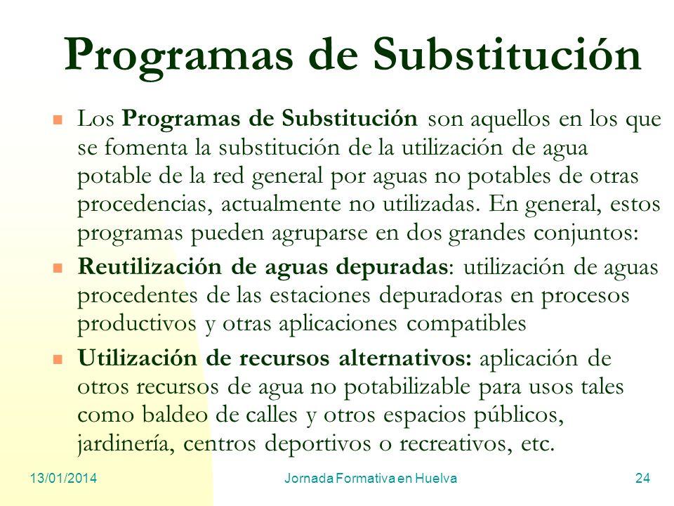 Programas de Substitución