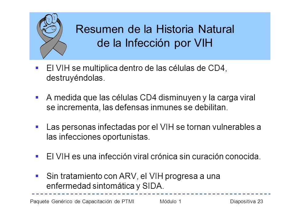 Resumen de la Historia Natural de la Infección por VIH