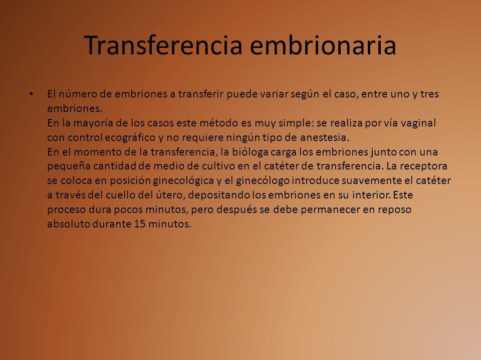 Transferencia embrionaria