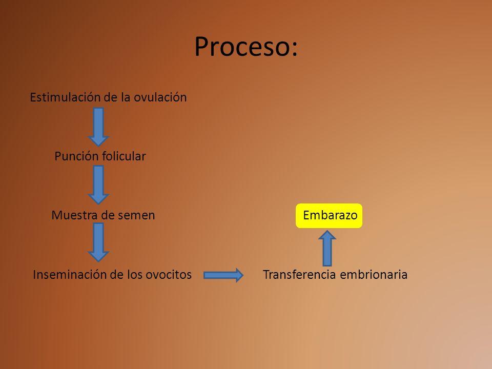 Proceso:Estimulación de la ovulación Punción folicular Muestra de semen Embarazo Inseminación de los ovocitos Transferencia embrionaria