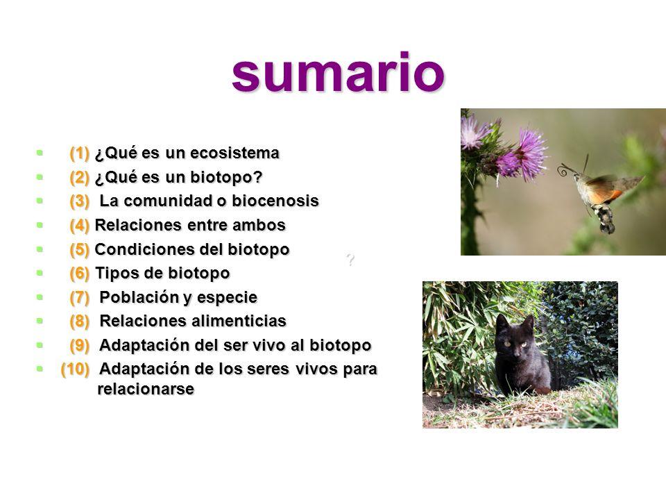 sumario (1) ¿Qué es un ecosistema (2) ¿Qué es un biotopo