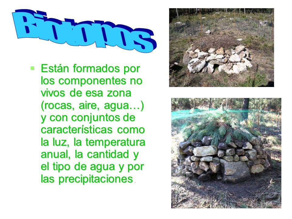 Biotopos Biotopos.