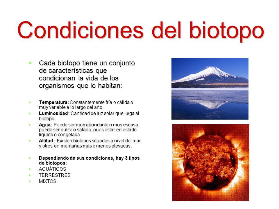 Condiciones del biotopo
