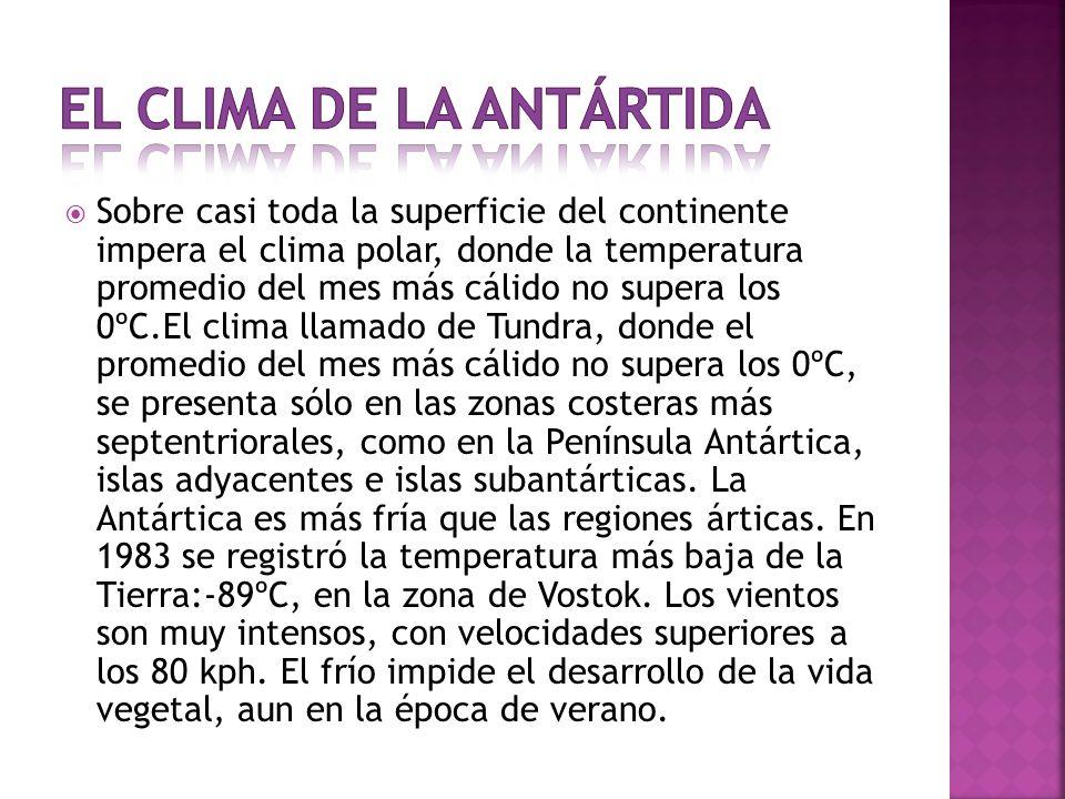 El clima de la Antártida