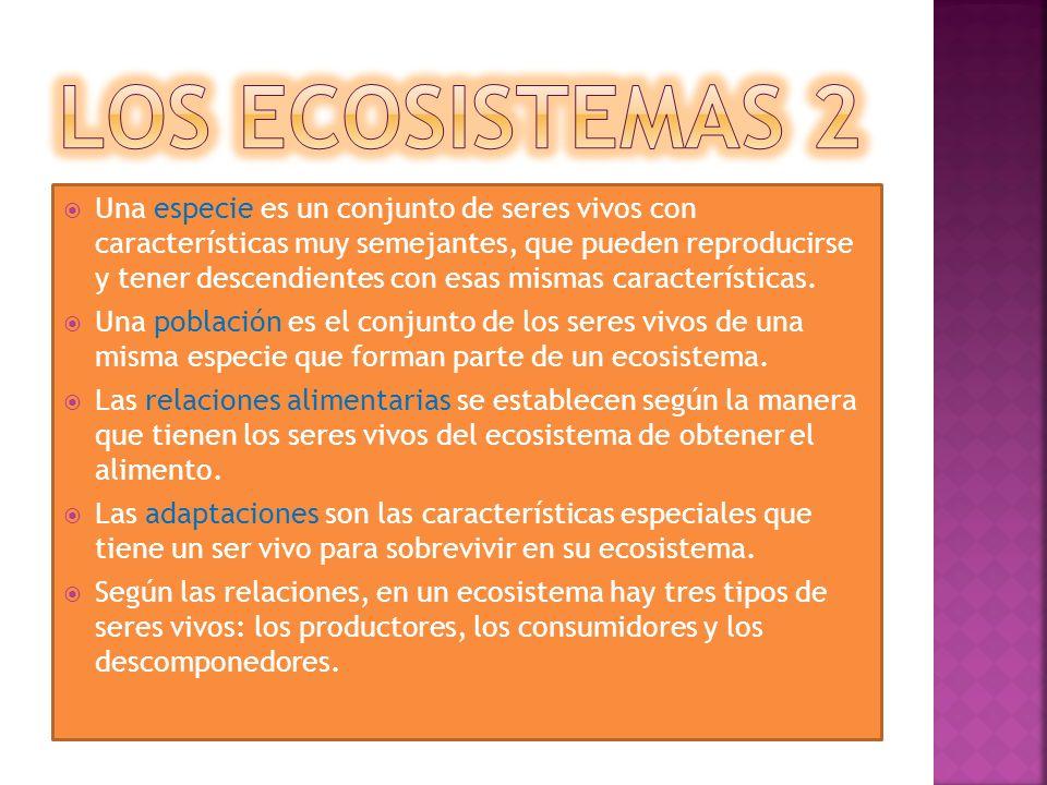 los ecosistemas 2