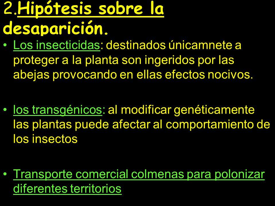 2.Hipótesis sobre la desaparición.