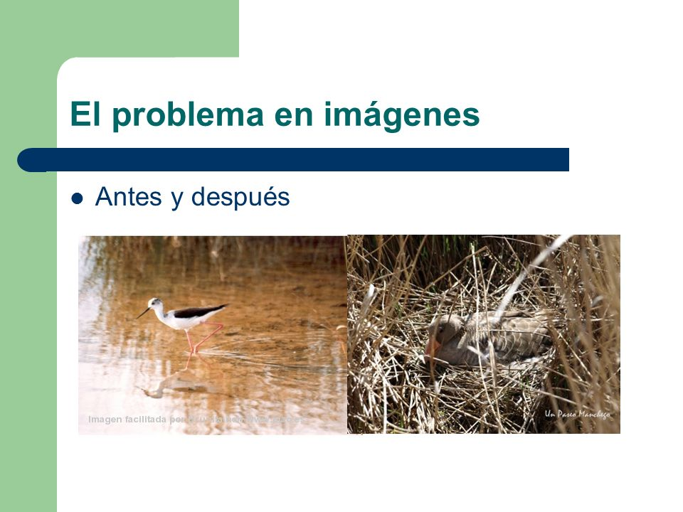 El problema en imágenes