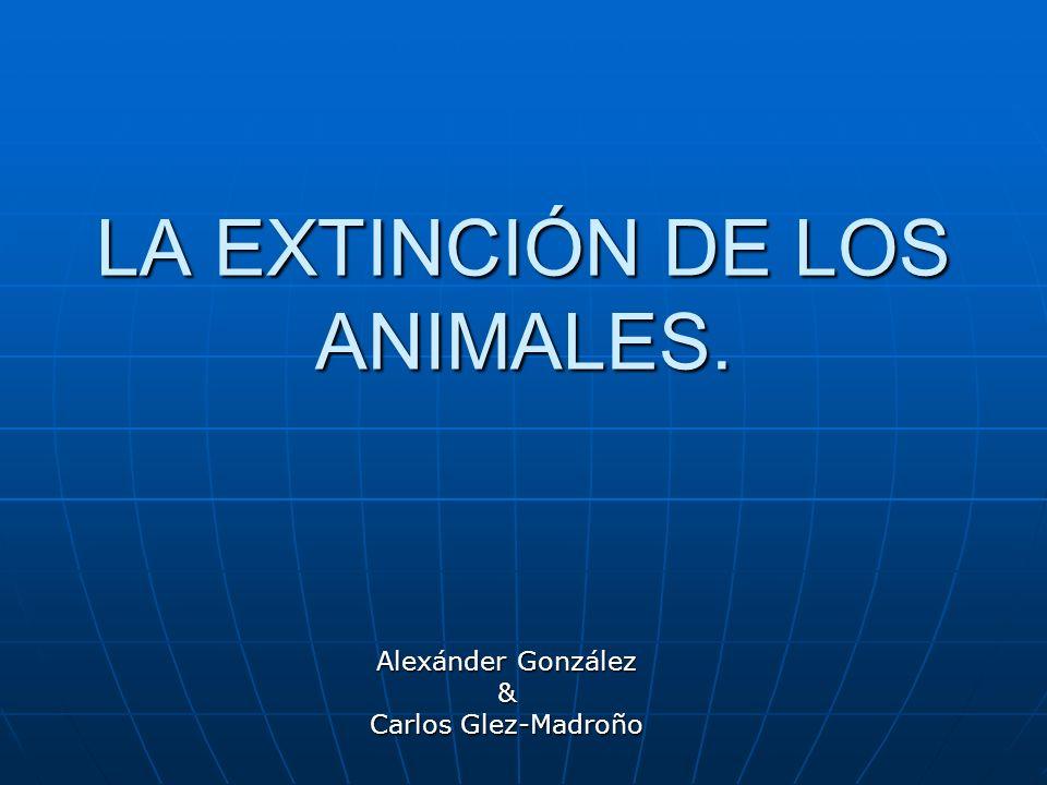LA EXTINCIÓN DE LOS ANIMALES.