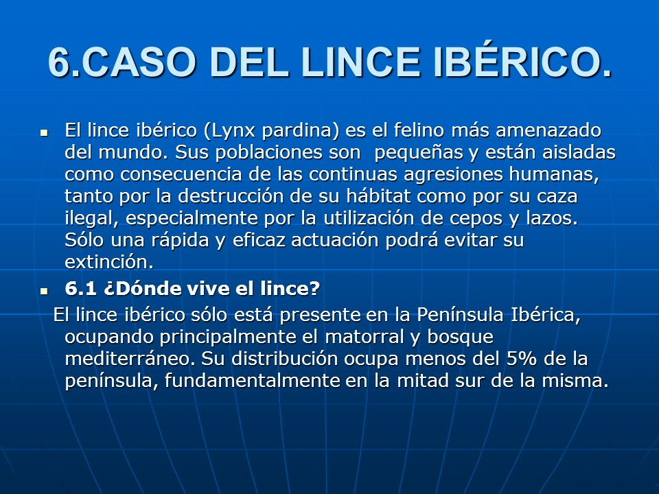6.CASO DEL LINCE IBÉRICO.