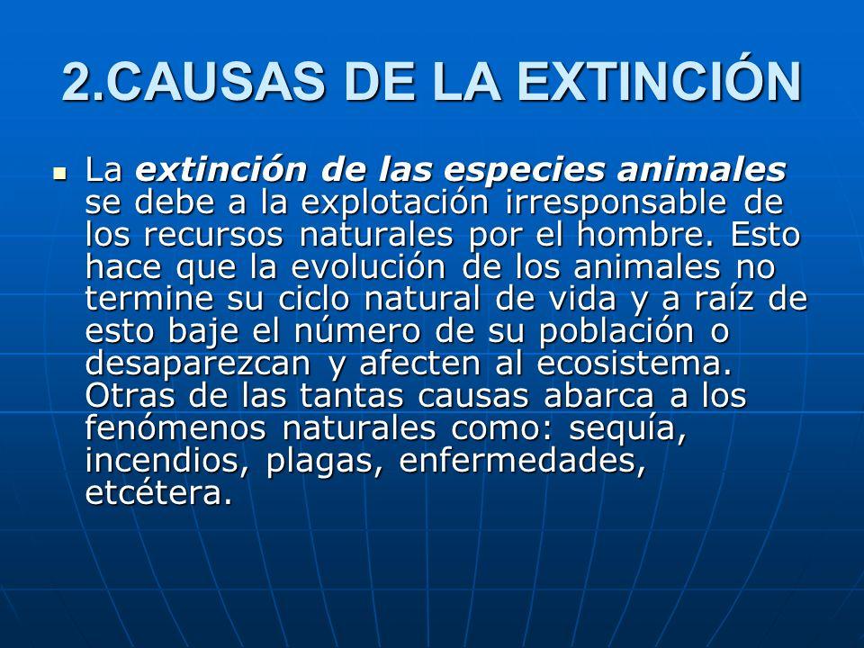 2.CAUSAS DE LA EXTINCIÓN