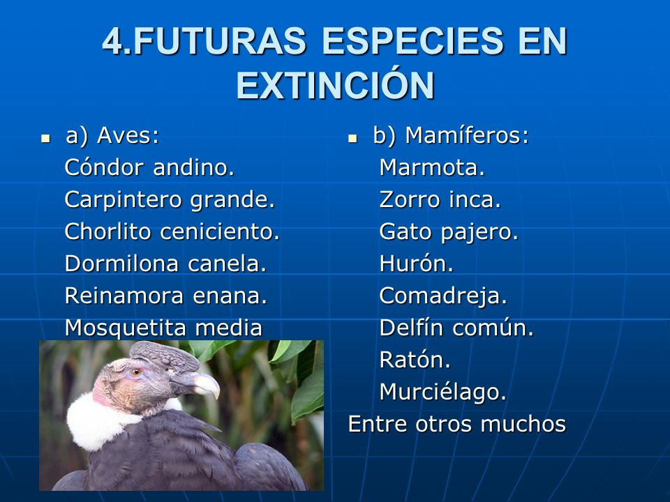 4.FUTURAS ESPECIES EN EXTINCIÓN
