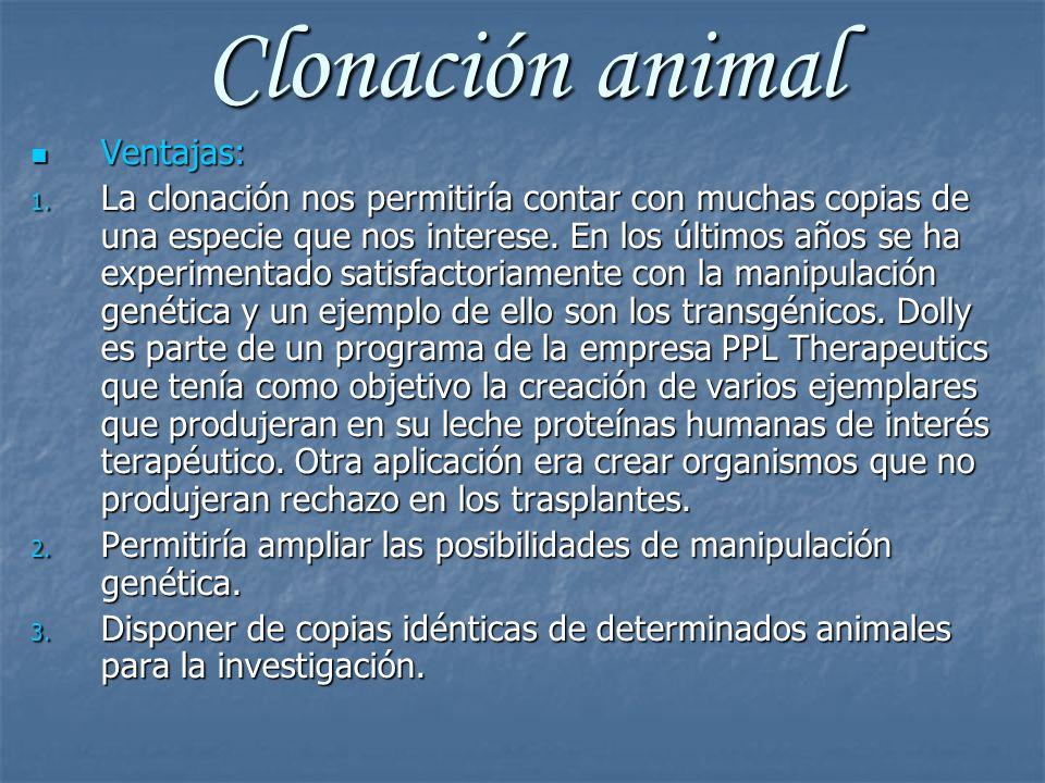 Clonación animal Ventajas: