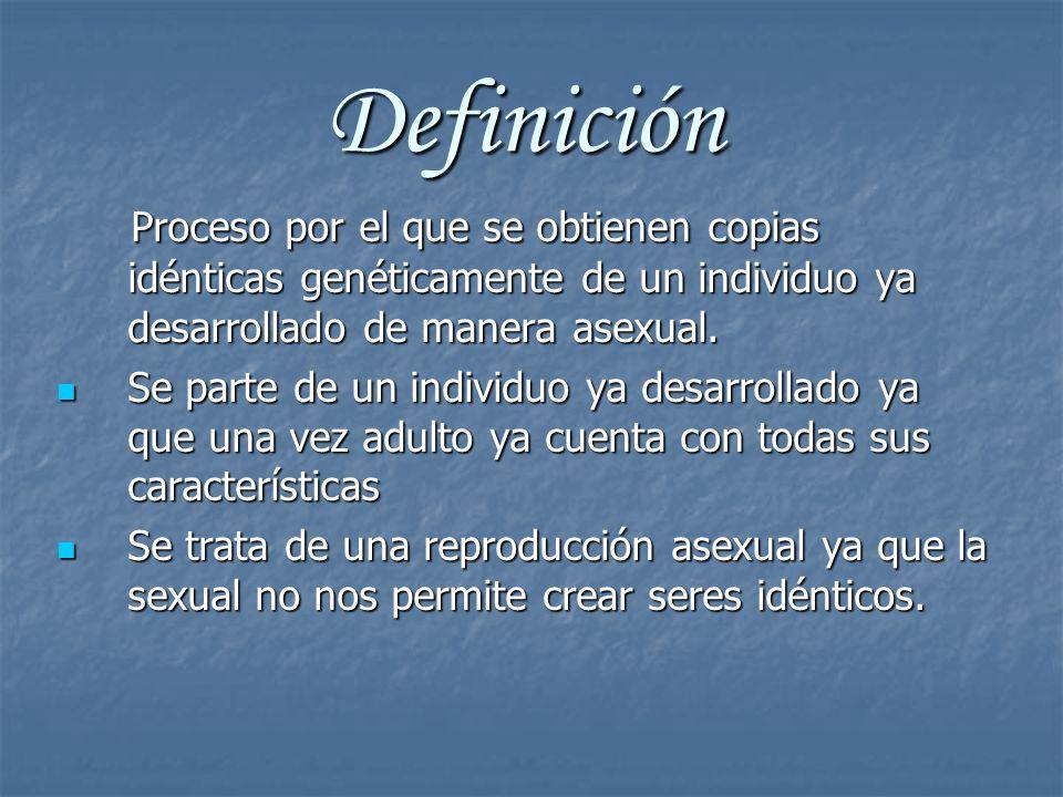 Definición Proceso por el que se obtienen copias idénticas genéticamente de un individuo ya desarrollado de manera asexual.
