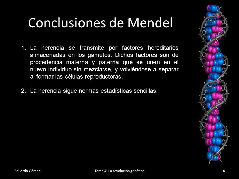 Conclusiones de Mendel