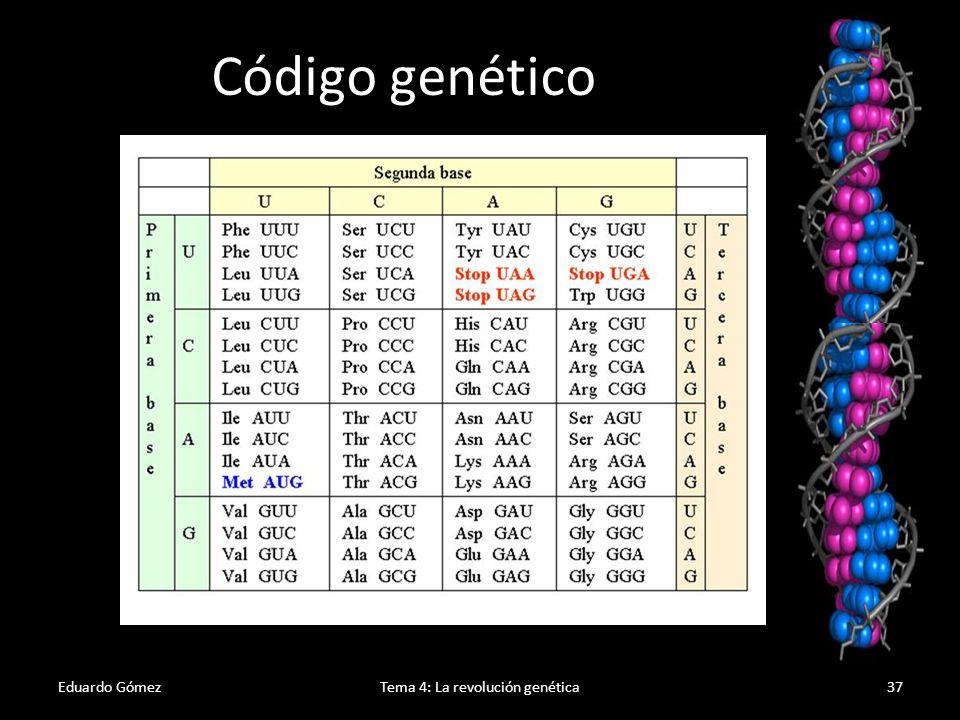 Tema 4: La revolución genética