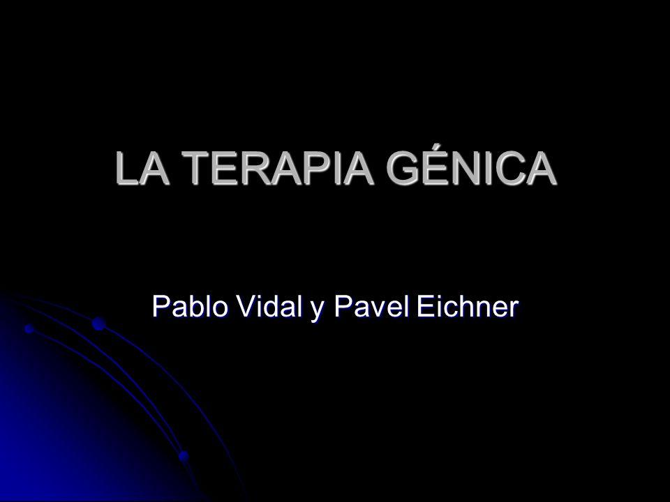 Pablo Vidal y Pavel Eichner