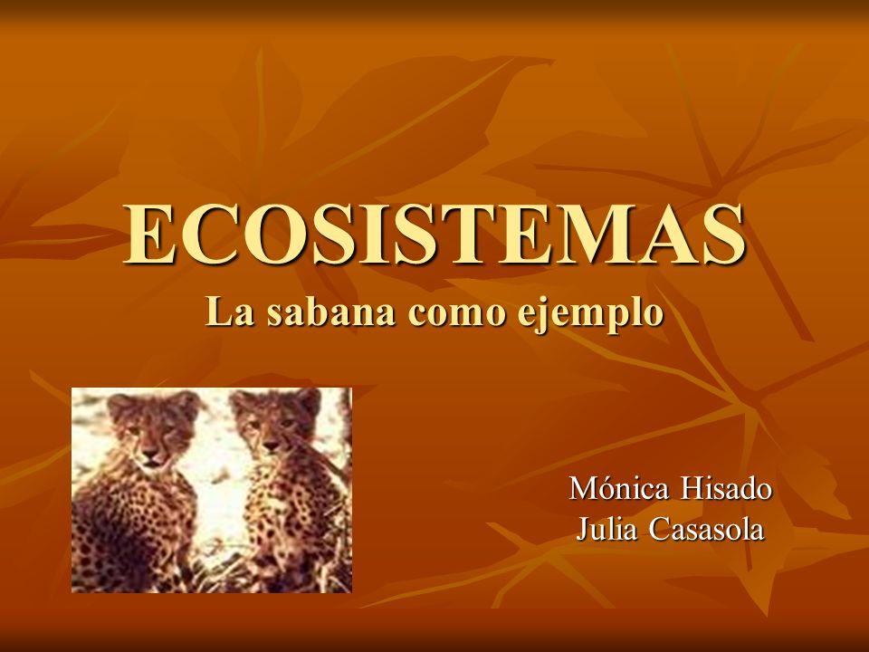 ECOSISTEMAS La sabana como ejemplo