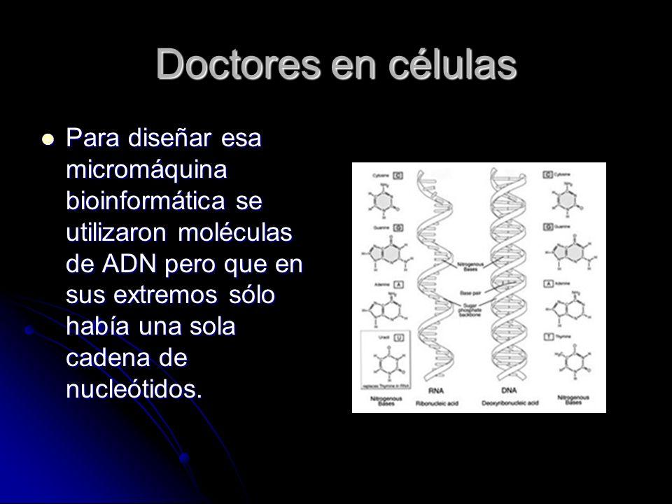 Doctores en células