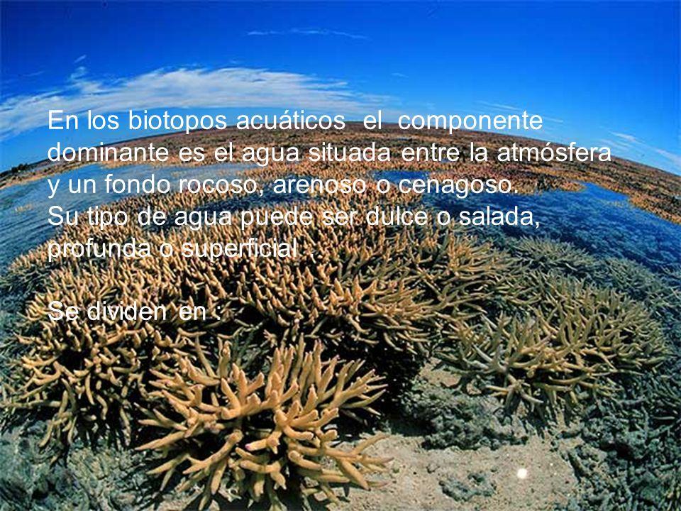 En los biotopos acuáticos el componente