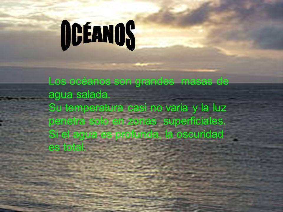 OCÉANOS Los océanos son grandes masas de agua salada.