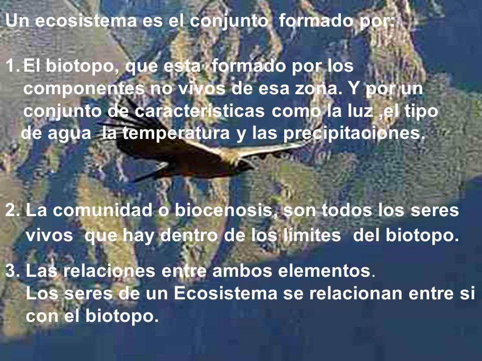 Un ecosistema es el conjunto formado por: