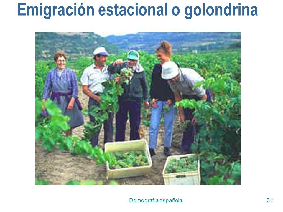 Emigración estacional o golondrina