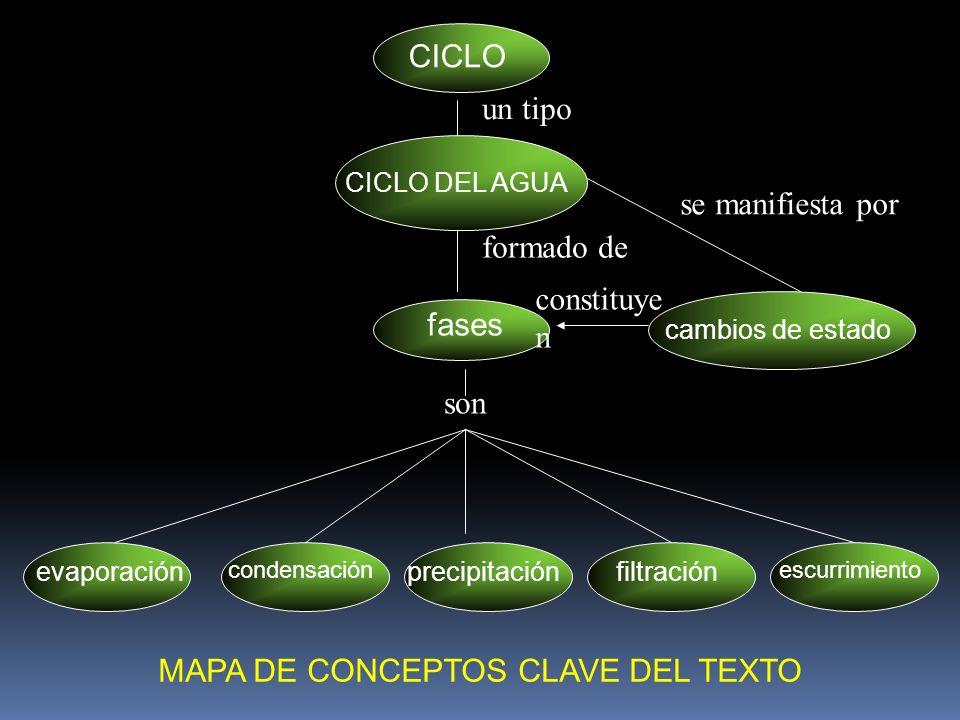 MAPA DE CONCEPTOS CLAVE DEL TEXTO