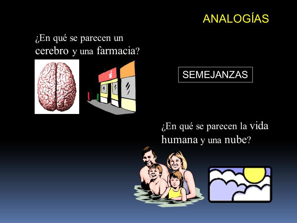 ANALOGÍAS ¿En qué se parecen un cerebro y una farmacia SEMEJANZAS