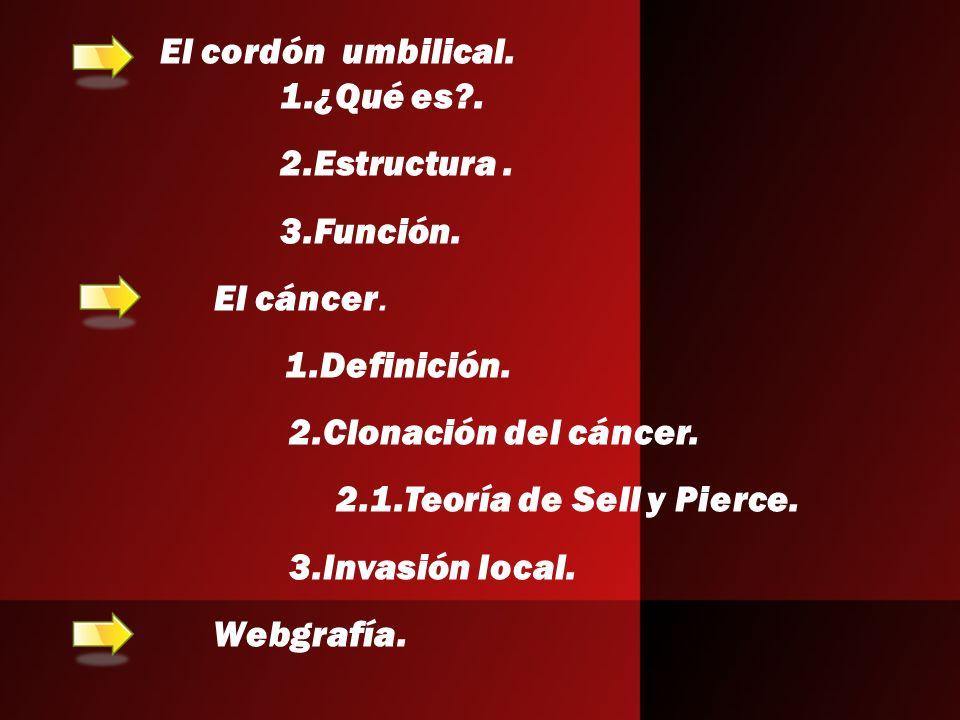 El cordón umbilical. 1.¿Qué es . 2.Estructura . 3.Función. El cáncer. 1.Definición. 2.Clonación del cáncer.