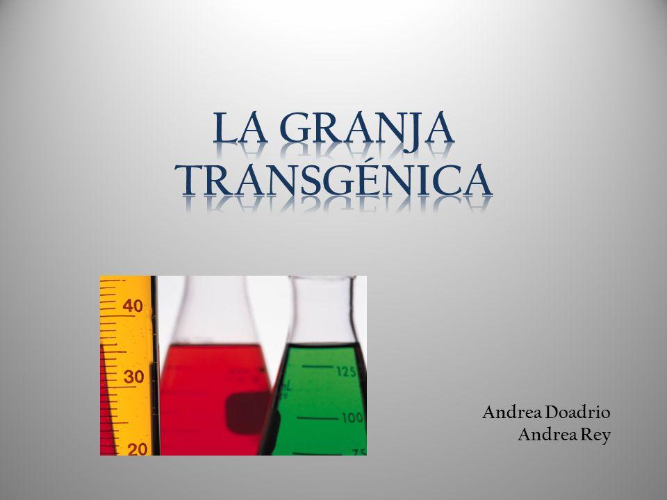 Andrea Doadrio Andrea Rey
