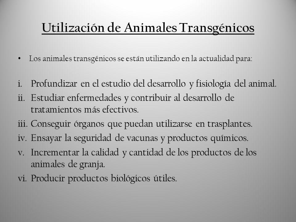 Utilización de Animales Transgénicos