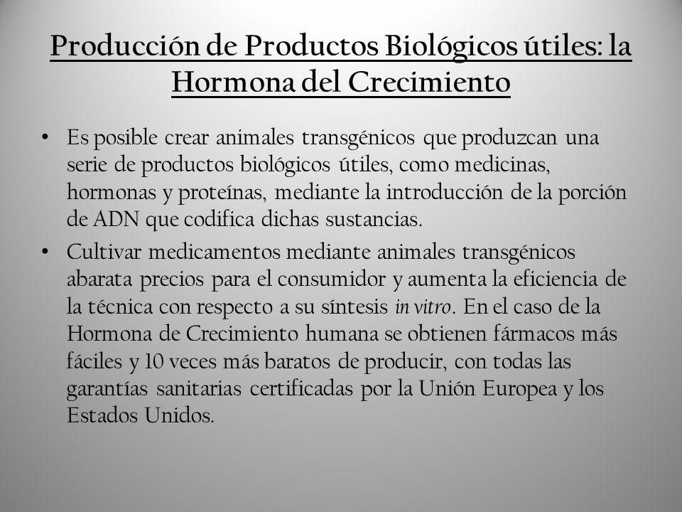 Producción de Productos Biológicos útiles: la Hormona del Crecimiento