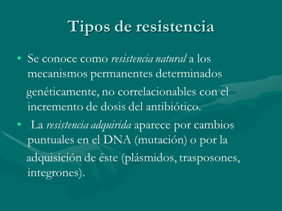 Tipos de resistencia Se conoce como resistencia natural a los mecanismos permanentes determinados.