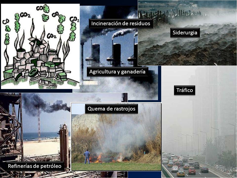 u Incineración de residuos Siderurgia Agricultura y ganadería Tráfico