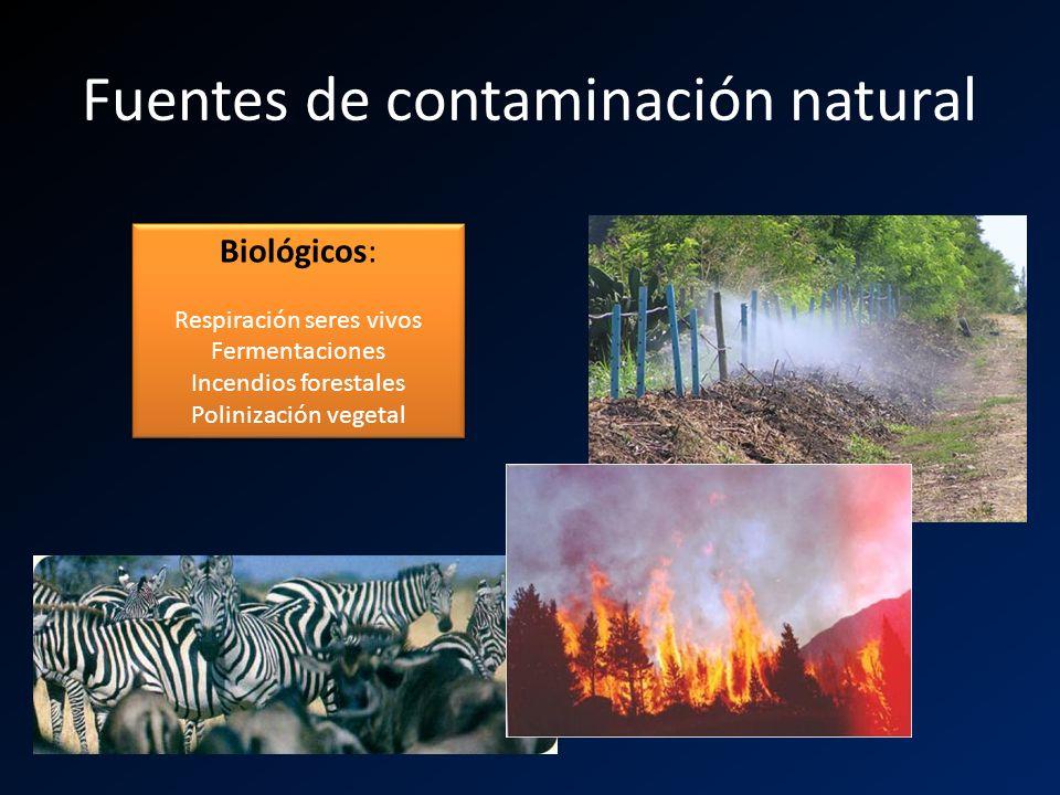 Fuentes de contaminación natural