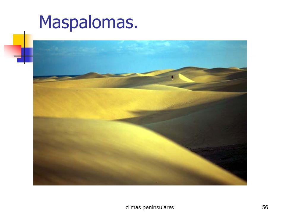 Maspalomas. climas peninsulares