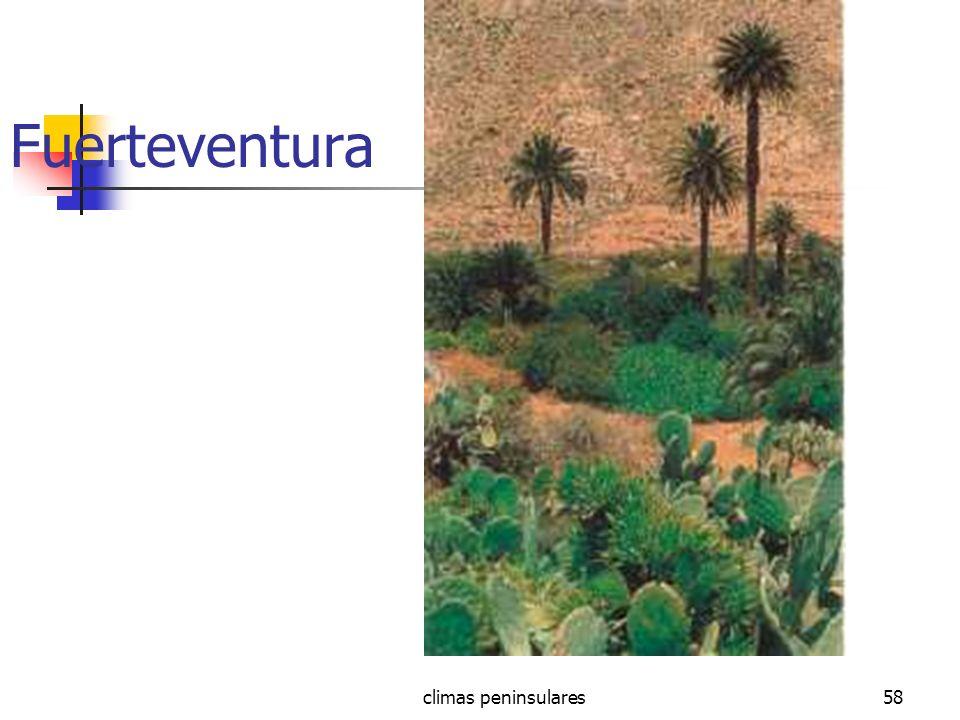 Fuerteventura climas peninsulares